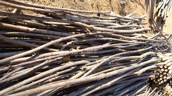 Le chataignier gaulettes bois portail cloture bois for Bois de chataignier prix