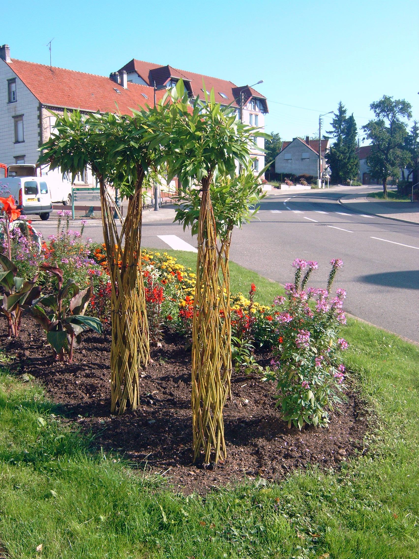 Haie De Jardin En Osier Photos - Seiunkel.us - seiunkel.us